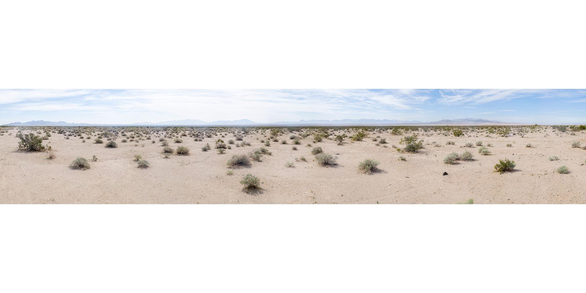 Wüste - Arizona - USA