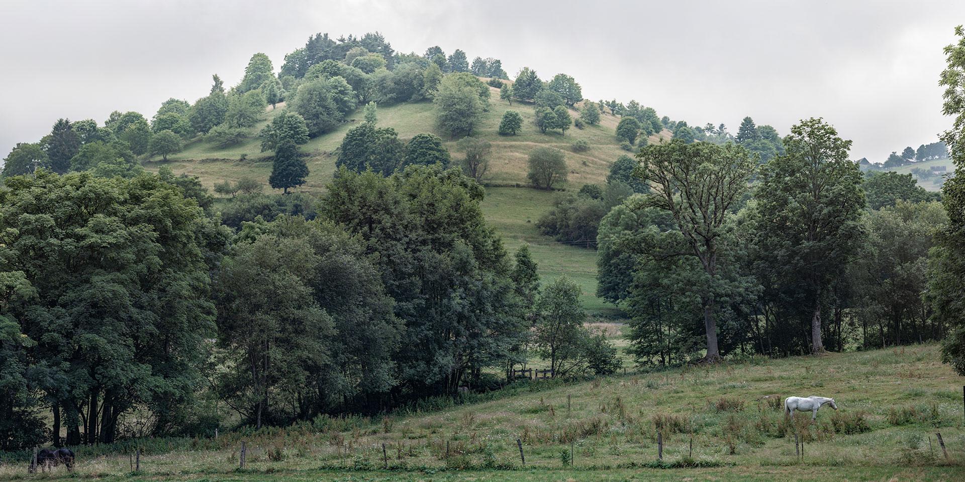Hügel im Elsass